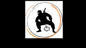 logo firmy wiatrodyskretni - ninja skrytobąk
